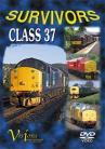 Survivors: Class 37